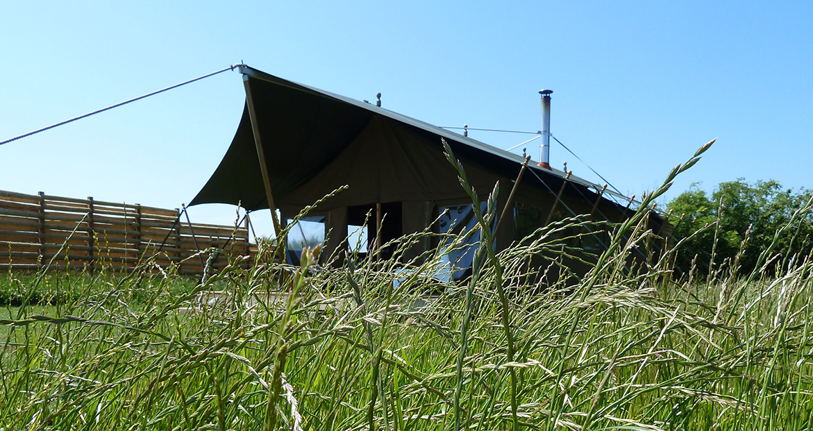 Looking up at woody the safari tent through the long grass